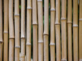 Bamboo fence. Maui, HI October, 2009