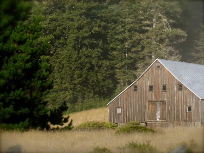 Old barn. Near Mendocino, CA  October, 2012