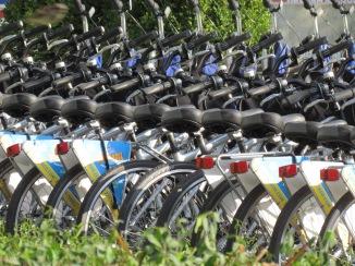 A Chicago Biker gang.  Millennium Park, Chicago, IL. October 2013.